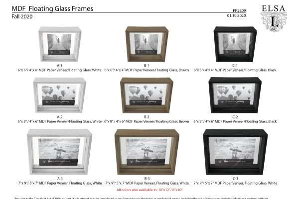 PP2809_Inline Floating Glass Frames